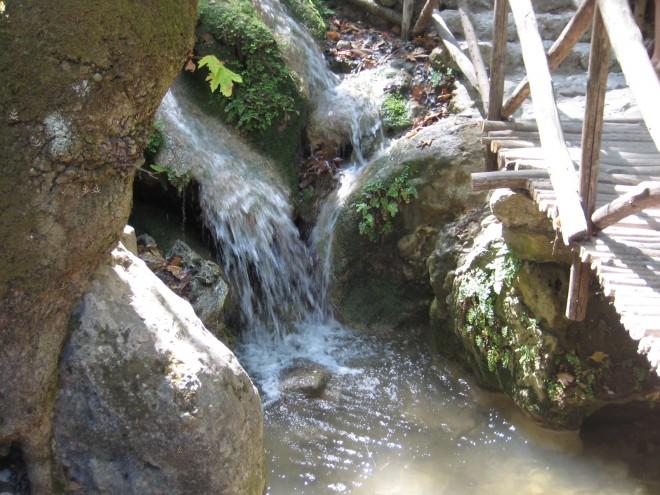 Die Elemente des Lebens: Ein Foto aus der Natur. Es zeigt einen Bach mit einigen Steinen und Pflanzen. Über den Bach führt eine kleine Holzbrücke.