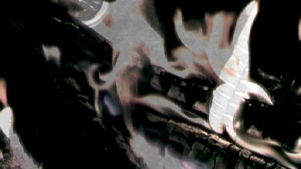 Brenna tuats guat : Bild eines brennenden Holzscheits in einem Kaminofen. Man sieht nur das dunkle Holz und die Flammen.